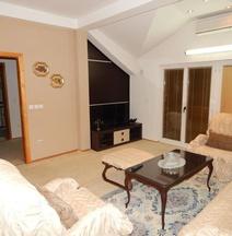 Biljana Apartment