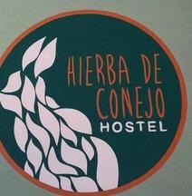 ヒエルバ デ コネホ ホステル