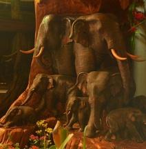 หมื่นช้างน่าน บูติกโฮเทล
