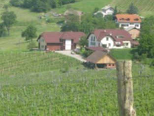 Tourist Farm Joannes