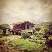 Grillo Tres Puntas Eco-Hostel