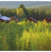 Skogshotell