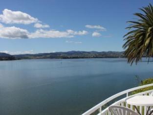 The Tauranga on the Waterfront