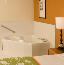 Fairfield Inn Suites Orlando Lake Buena Vista