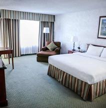 皮卡迪利酒店