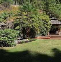 Sunshine Coast Treetop B&B
