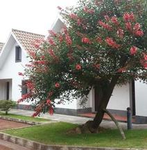 Apartamentos Turisticos Nossa Senhora Da Estrela