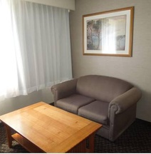 Quality Inn & Suites Vestal