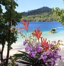 Evis Resort at Nggatirana Island