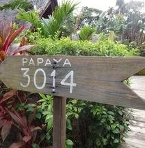 帛琉植物園渡假村