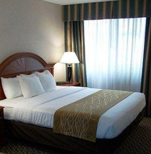Comfort Inn and Suites Pittsburgh