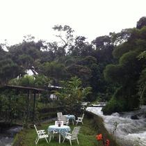Ecovita Organic Lodge & Farm