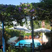Villa Tehila