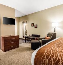 Comfort Inn Memphis Downtown