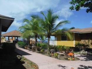 Seagrape Plantation Resort & Dive Center