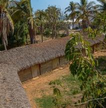Alebrijes Surf House