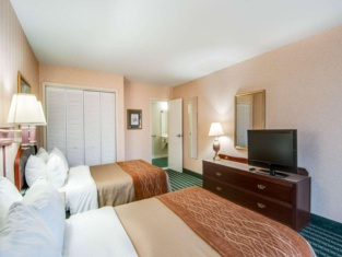 Comfort Inn Airport Roanoke