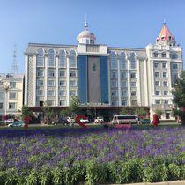 Wangjiang Holiday Hotel