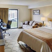 Comfort Inn Dryden