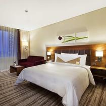 Hilton Garden Inn Konya, Turkey