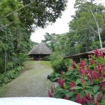 Yachana Lodge