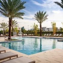 Springhill Suites Orlando At Millenia