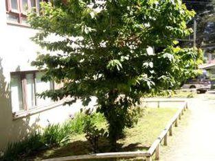 Departamento Ejercito Coyhaique