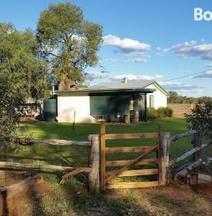 Charleville Bush Cottage