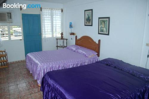 Hostel Yonel