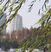 Jiangsu Phoenix Palace Hotel