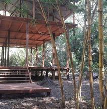 Tambopata Amazon Hostel