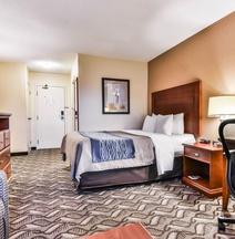 Comfort Inn & Suites Ambassador Bridge