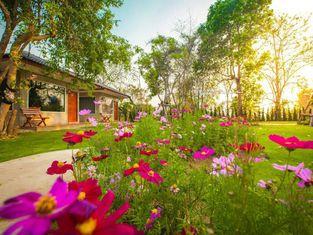 Villa De Bua Resort Nan