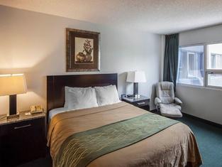 Comfort Inn & Suites Downtown Edmonton