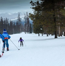 Best Western Rocky Mountain Lodge