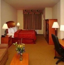 Comfort Suites San Angelo Near University