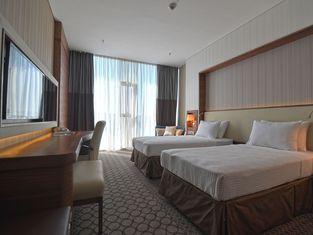 阿尼蒙薩姆松酒店