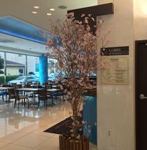 Toyoko Inn Haeundae 1 Busan