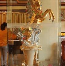 Golden Stallion Suites