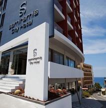 スマートライン セミラミス シティ ホテル