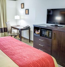 Comfort Inn & Suites Near Universal - North Hollywood – Burbank
