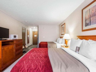 維多利亞舒適旅館和套房