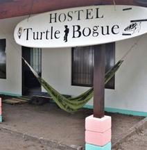 Hostel Turtle Bogue