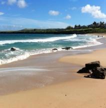 Bay Villa 17B2 Gold Ocean View