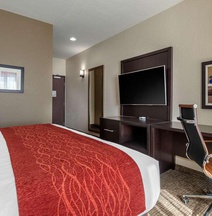 Comfort Inn & Suites Cedar Rapids Cid Eastern Iowa Airport