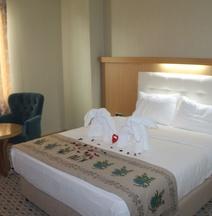 Grand Ali'n Hotel Turhal