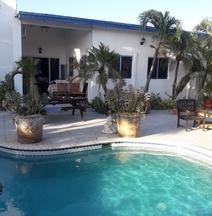 Palmita Hostel