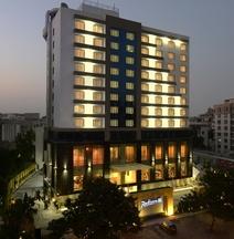 ラディソン ブル ホテル アフマダーバード