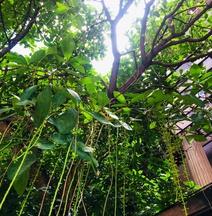 Banilah Guesthouse Chiang Mai