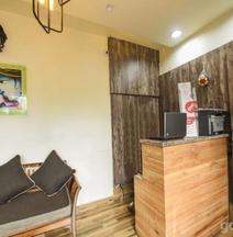 OYO 7905 Holiday Inn